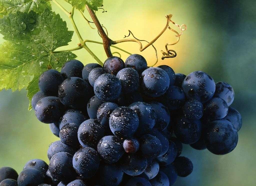 como pelar uvas
